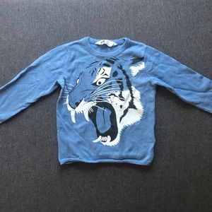 Toddler Boys H&M Sweater